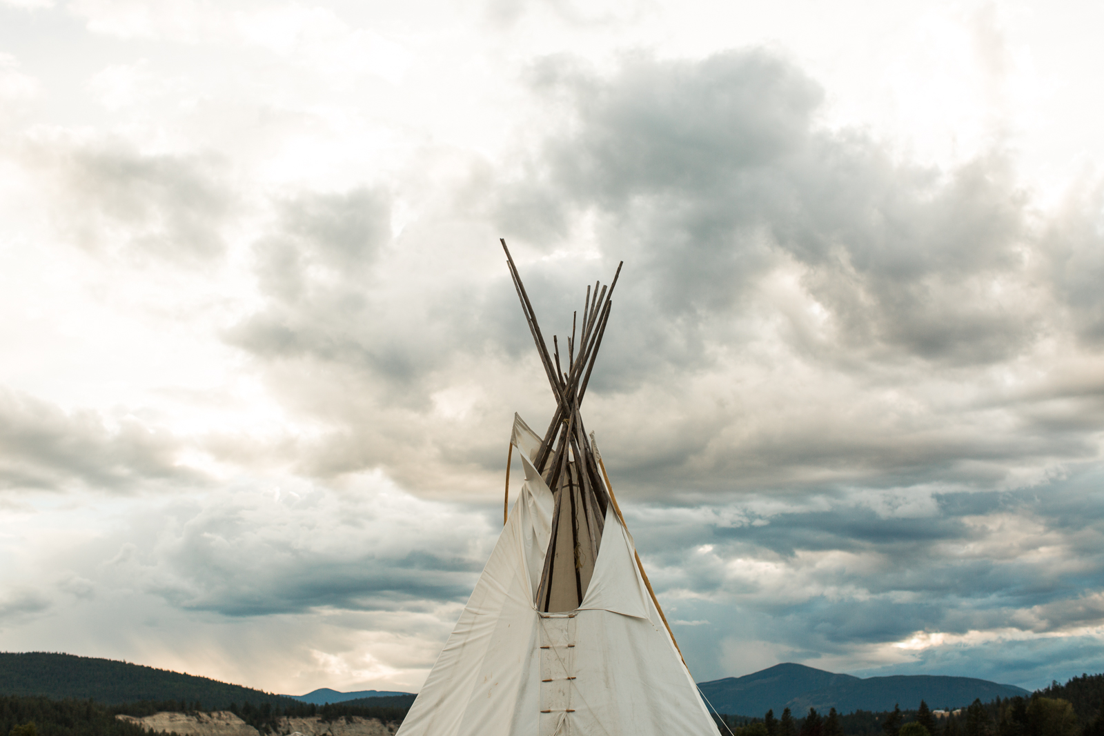 57-willow_and_wolf_photography_nicole_and_gary_cranbrook_wedding_blog