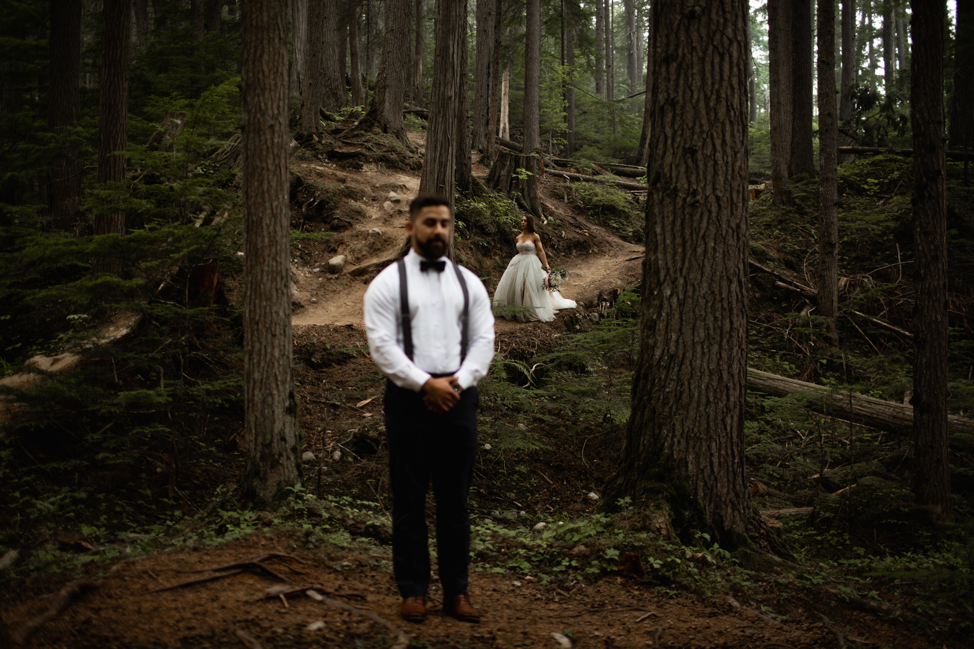 first look in forest