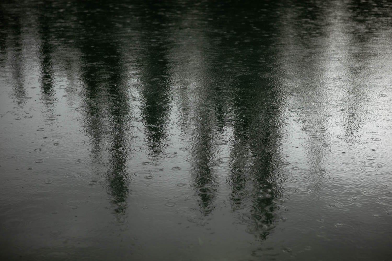 Emerald Lake Lodge Tree Reflection