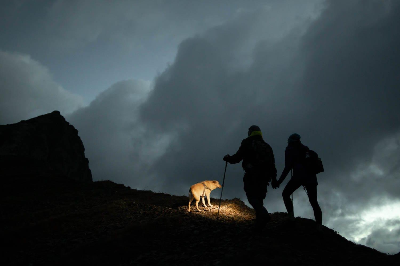 engaged couple hiking with dog