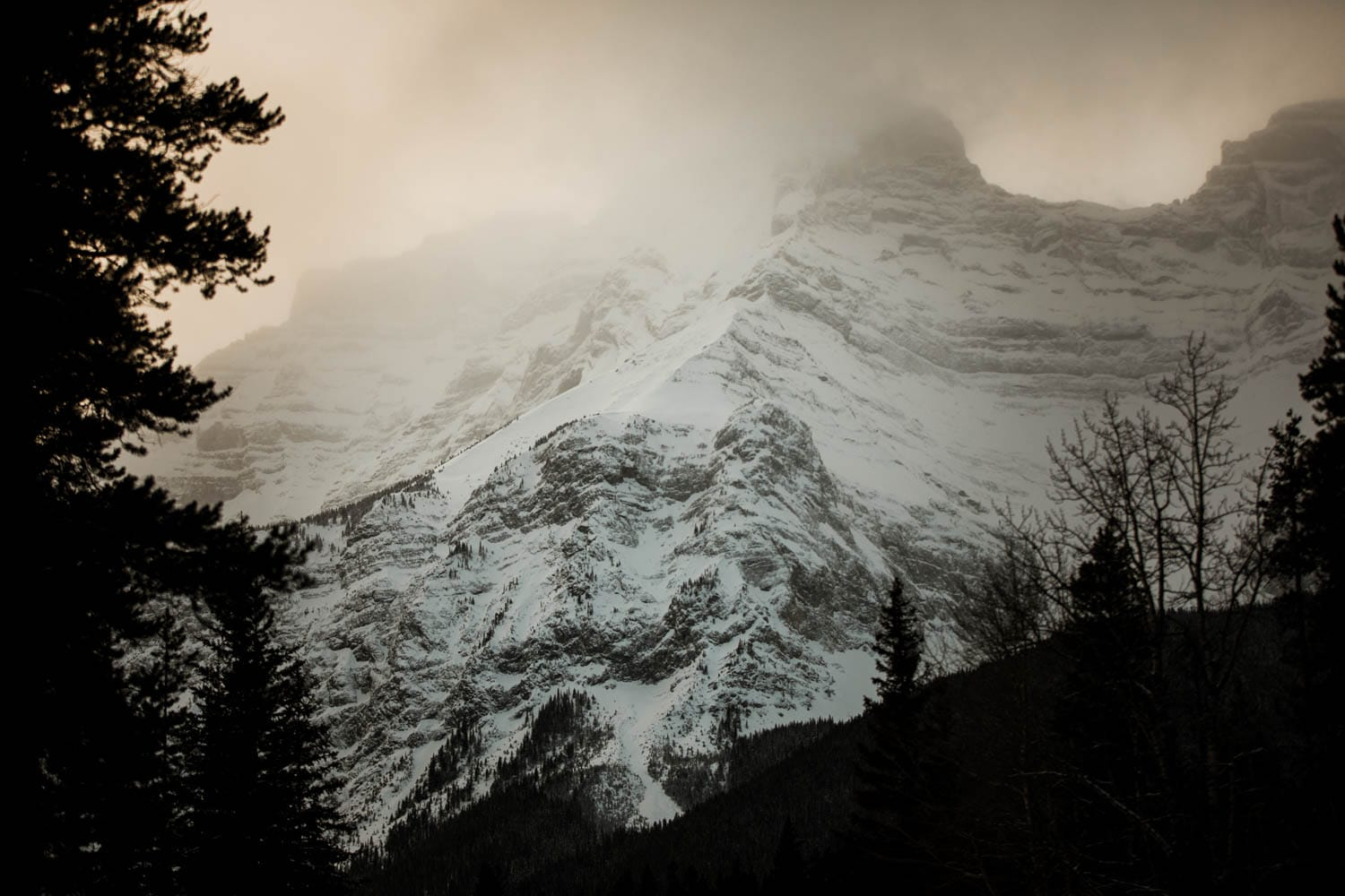 Banff Winter Landscape