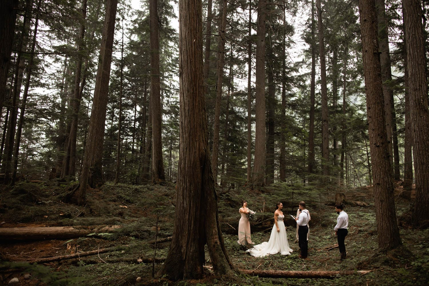 Forest elopement ceremony