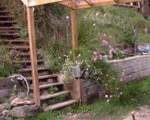 Hudson Creek Gardening Thoughts