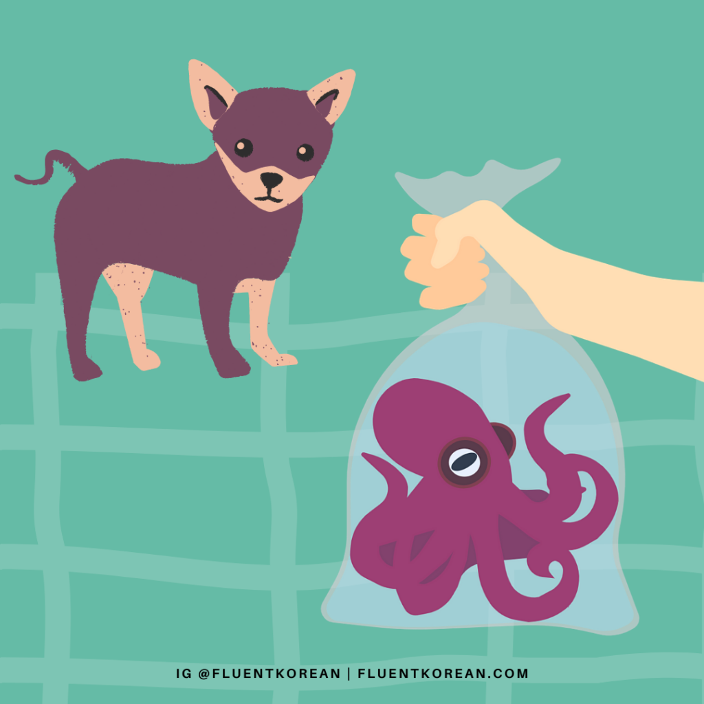 [Proverb] 개 미워서 낙지 산다 – To Buy Octopus Out of Hatred for One's Dog 🐙