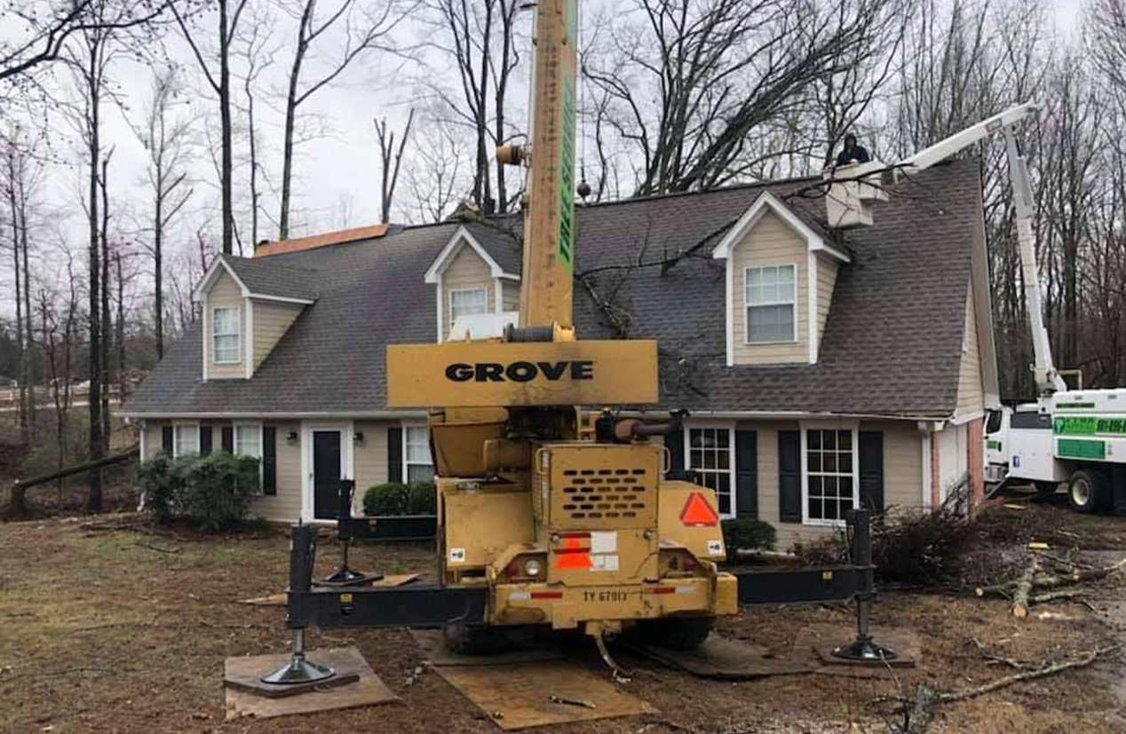 Memphis Tree Service and Removal