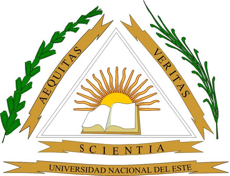 Ing. Vazquez de la UNE, premiado por el Senado de la nación Argentina