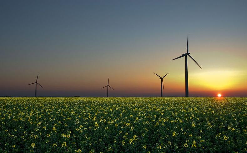 Estado de Virginia (EEUU) apoya proyectos de energía renovable