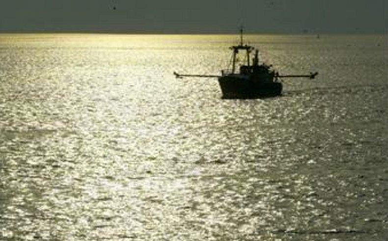 Fishing fleet. Fuente: Commission Europea