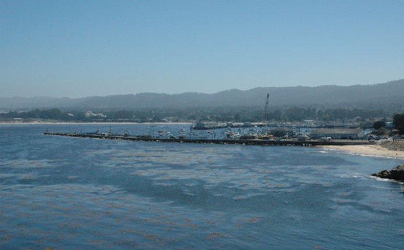 Tendencias científicas: ¿Dónde se esconde la basura oceánica?