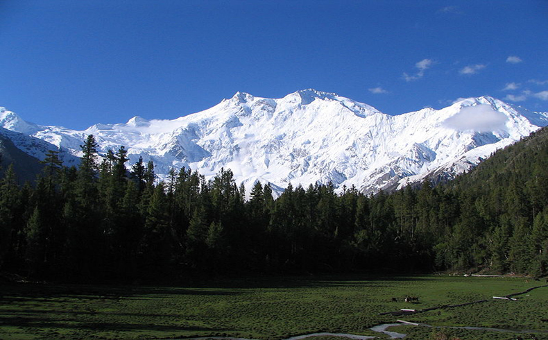 El endemismo recurrente de Cachemira