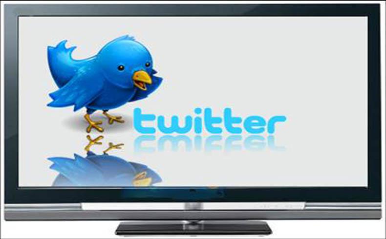 Sin televisión ni Twitter nuestro cerebro no perdería materia gris