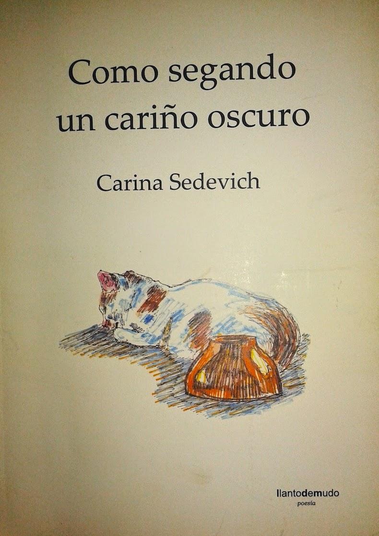 Libro Sedevich 4 – Como segando un cariño oscuro, 2012