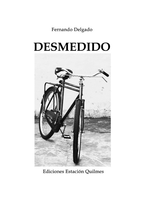 Libro Delgado 1 – Desmedido