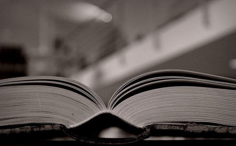 Gadamer y las palabras