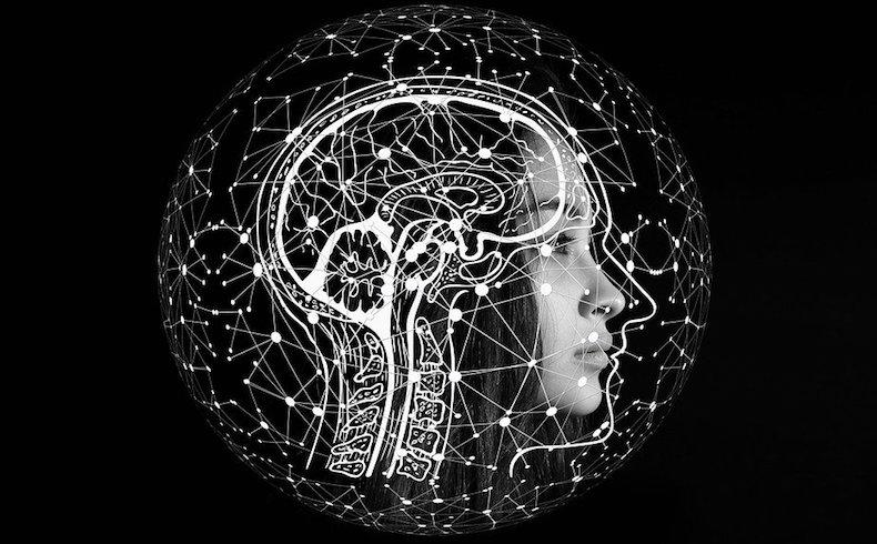 Inteligencia y ambiente