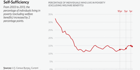 Percentage of Individuals Who Live in Poverty