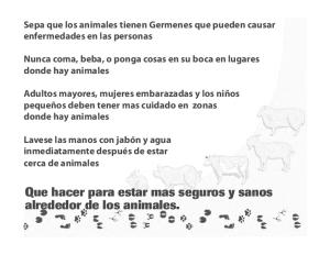 Animal Exhibits Safety (Spanish)