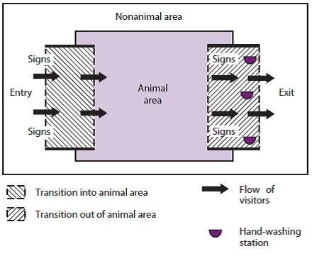 Petting Zoo Safety Walkthrough 1