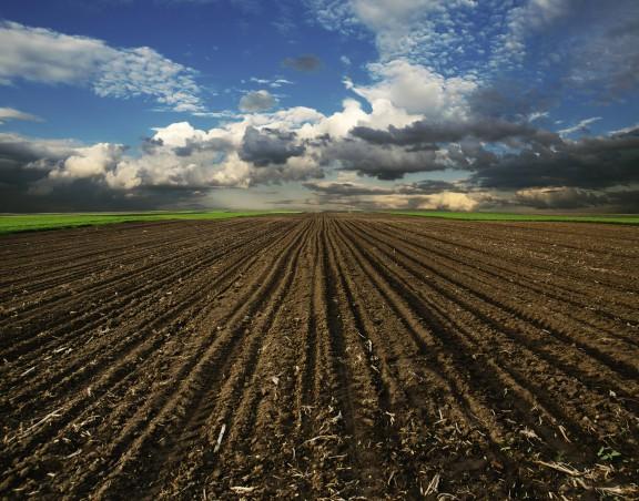 Farmers' Markets Walkthrough 1