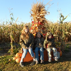 Kids in Corn Maze