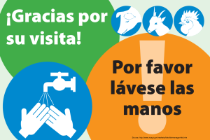 Thank You Wash Hands (Spanish)