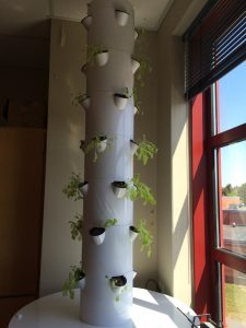 MEF Tower Garden