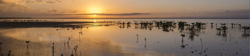 Florida waterways deserve better