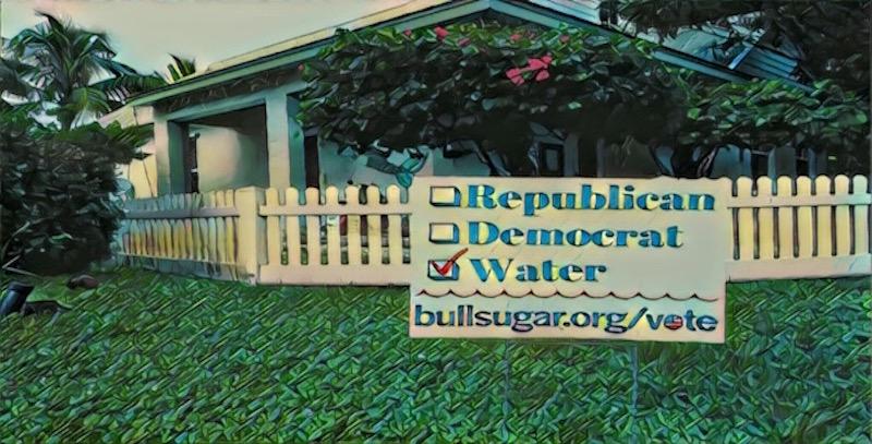 Vote_water800.jpg