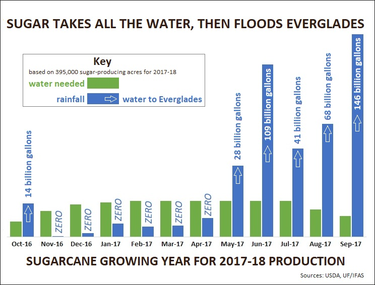 Sugarcane took all the available water, then flooded the Everglades in 2017