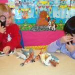 prekindergarten5