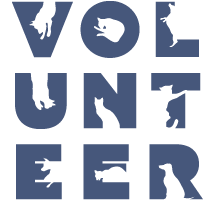 volunteer_at_heart_of_the_valley