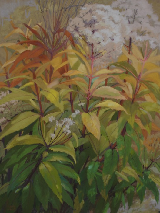 """PyeWeed in My Yard 23""""x30"""" Pastel by A. Scott"""