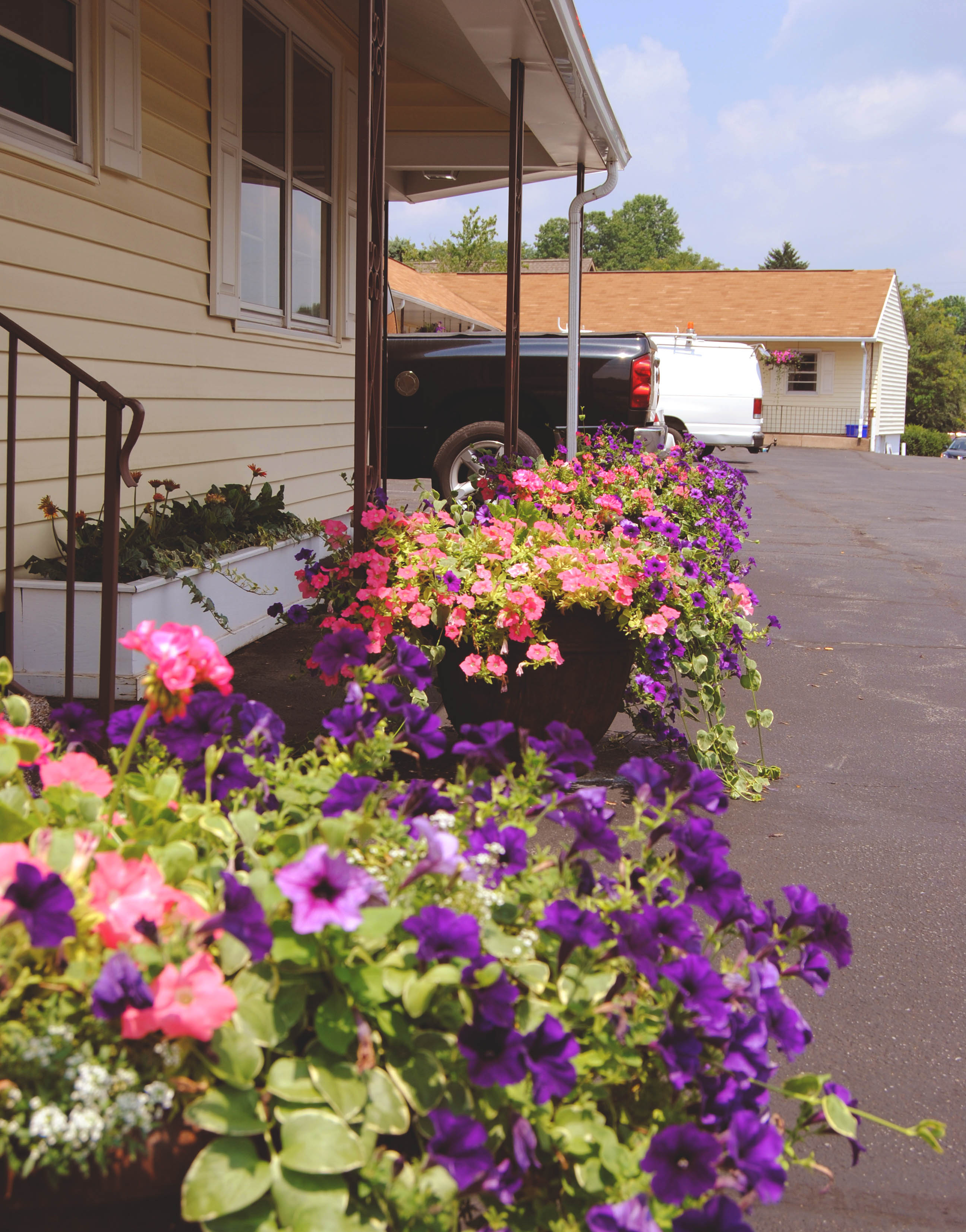 flower beds outside of the stevens motel - rates