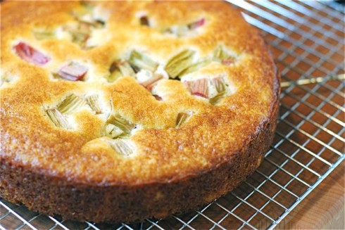 Rhubarb Yogurt Cake | The Naptime Chef