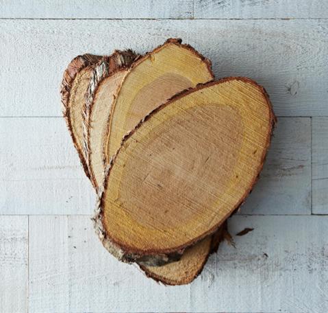 Cedar Grilling Planks via Food52