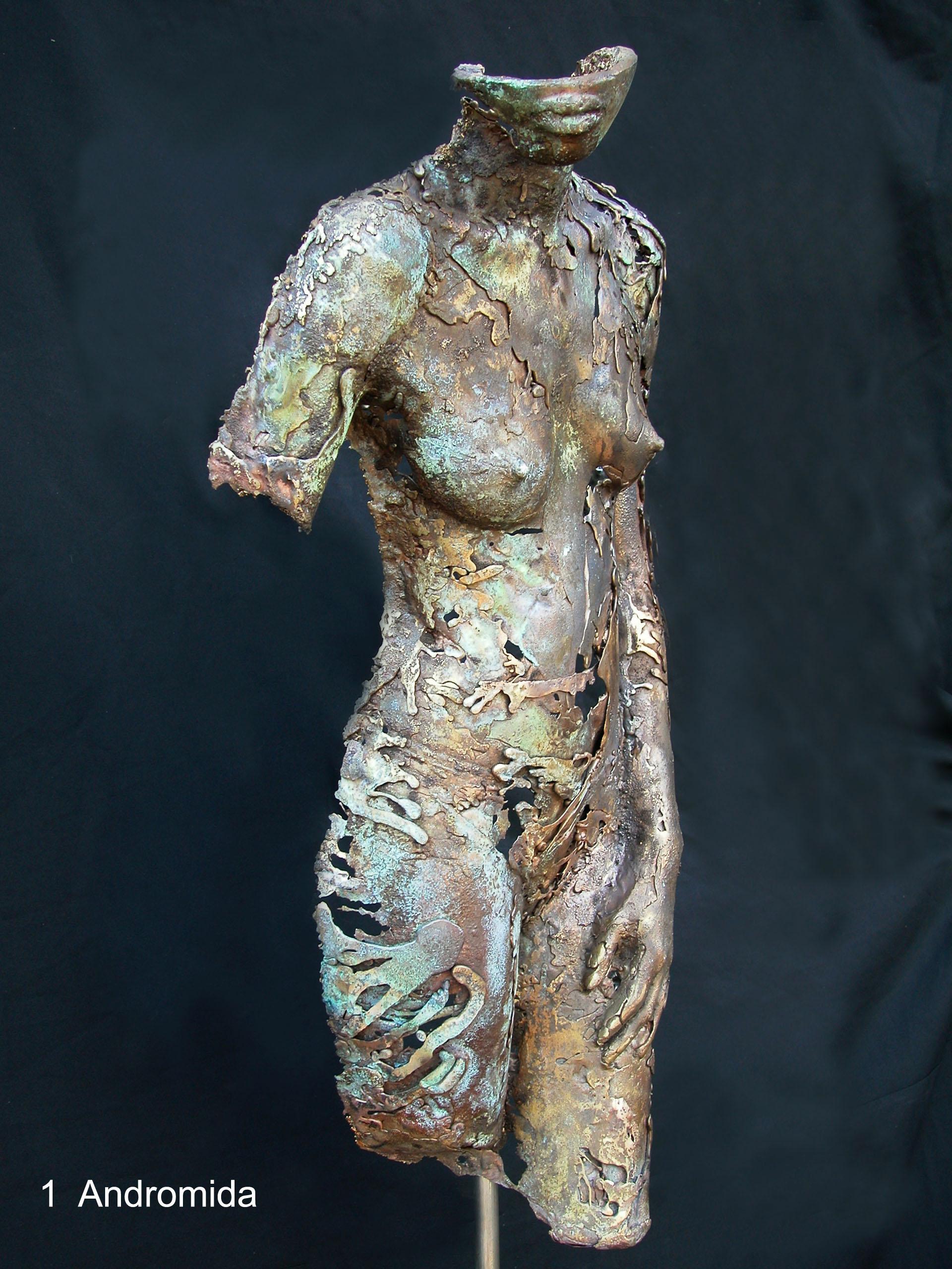 Andromeda Bronze body casting
