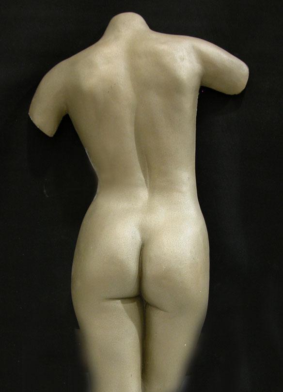 Full back torso Casting