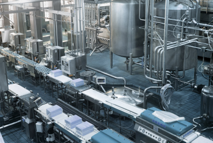 food-processing-motor-repair