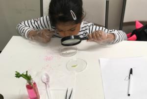 closeup-celery-test