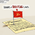 Red Flag Laws – What You Need To Know