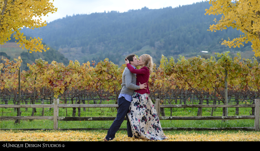 California Photographers-Napa Valley-vineyard-best-unique-photography-san fran-san francisco-16