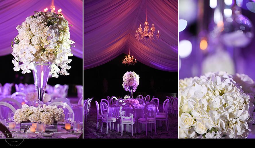 MIAMI WEDDING PHOTOGRAPHY-WEDDING PHOTOGRAPHER-VIZCAYA-BRIDE-GROOM-ENGAGED-59