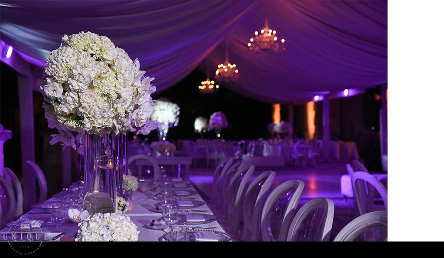 MIAMI WEDDING PHOTOGRAPHY-WEDDING PHOTOGRAPHER-VIZCAYA-BRIDE-GROOM-ENGAGED-60