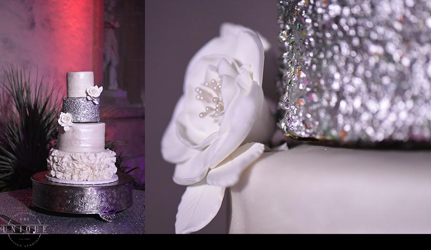 MIAMI WEDDING PHOTOGRAPHY-WEDDING PHOTOGRAPHER-VIZCAYA-BRIDE-GROOM-ENGAGED-62