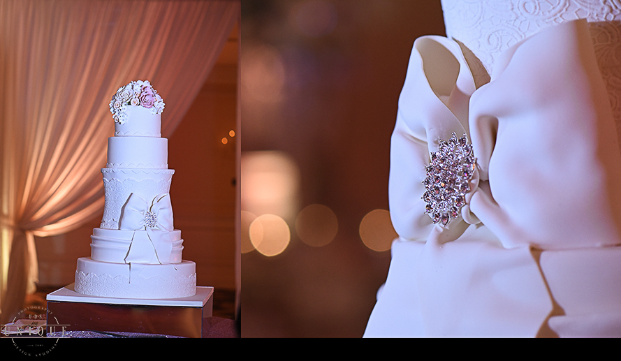 Miami wedding photographers-wedding photography-uds-udsphoto-engaged-engagement-32abc