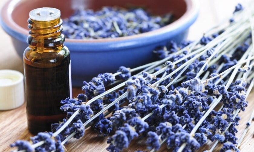 Benefits of Essential Oils for Kids with Disabilities