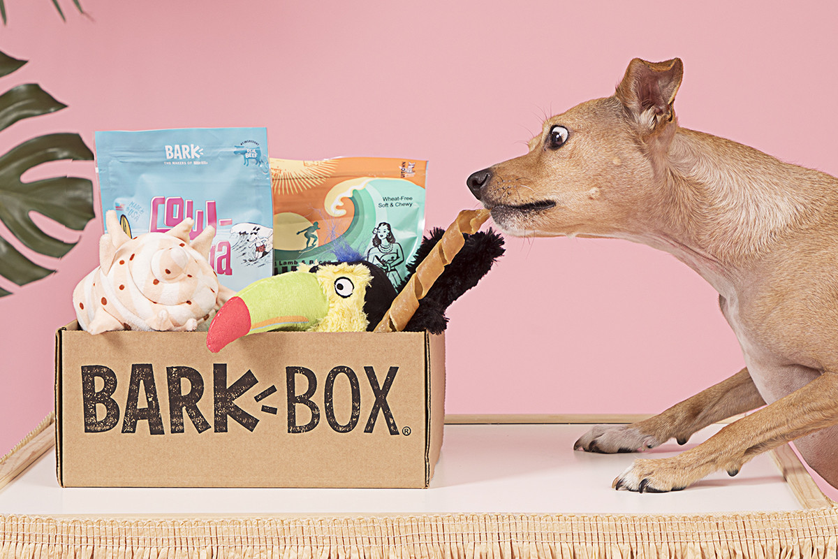 BarkBox: Fun Box of Treats and Toys For Your Pup!