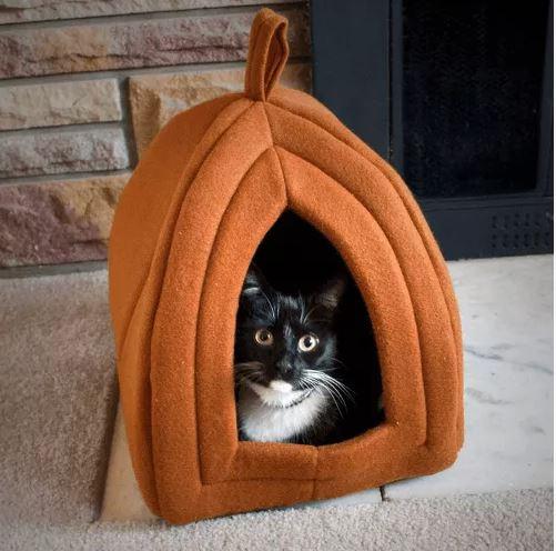 52% Off PETMAKER Cat Pet Bed! Was $24.99!