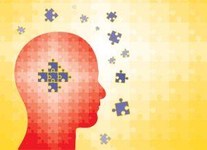 organizing the brain