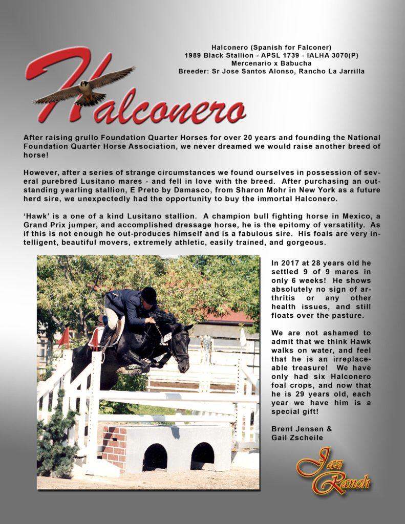 Halconero testimonial